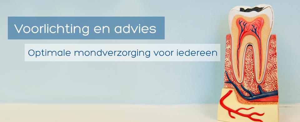 Voorlichting en advies